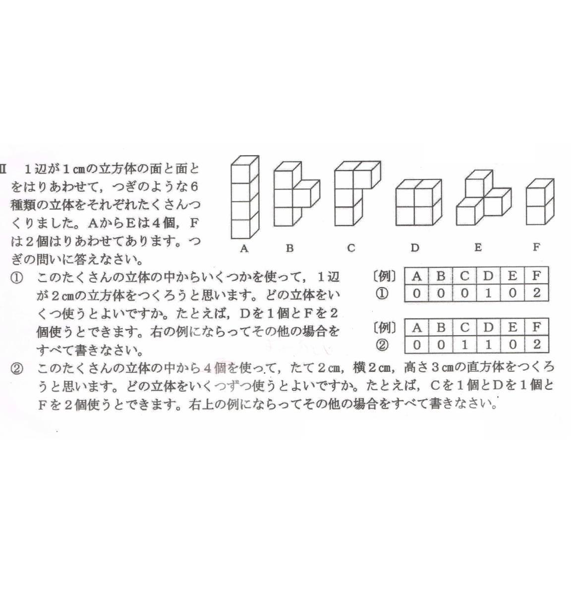 (5d)ニキーチン みんなの積み木 解答編 手本セット パターンカード つみき 家庭保育園 モンテッソーリ 中学受験 立体 公文_画像3