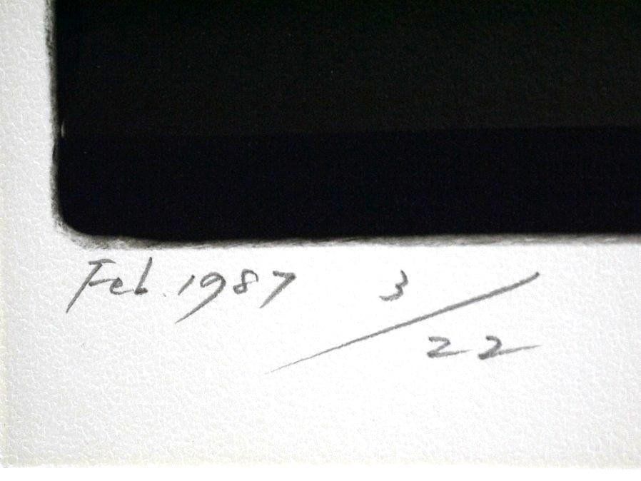 ■真作保証■【大坂寛】 ゼラチンシルバープリント 『Syzygy #100 Feb. 1987』■ed.22■サインあり■額装:41.5×32cm■_画像8