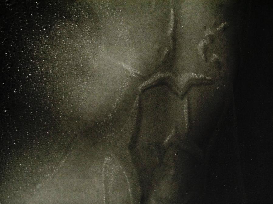 ■真作保証■【大坂寛】 ゼラチンシルバープリント 『Syzygy #93 July 1986』■ed.22■サインあり■額装:41.5×32cm■_画像6