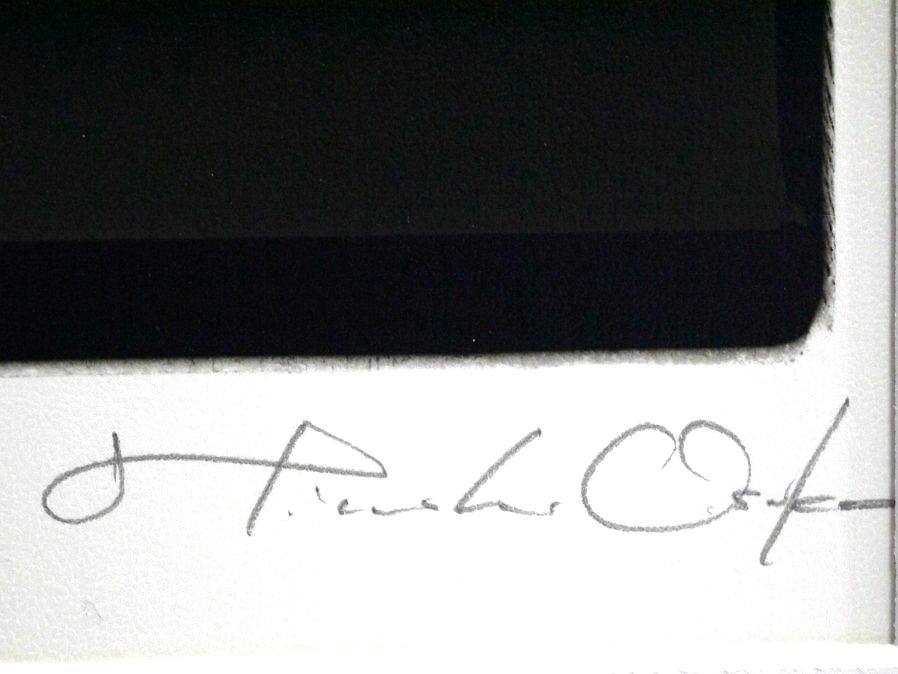 ■真作保証■【大坂寛】 ゼラチンシルバープリント 『Syzygy #100 Feb. 1987』■ed.22■サインあり■額装:41.5×32cm■_画像7