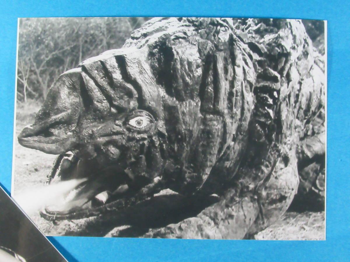 希少特撮資料★ゴルゴスラゴンパゴス「ウルトラQ」スチール写真セット