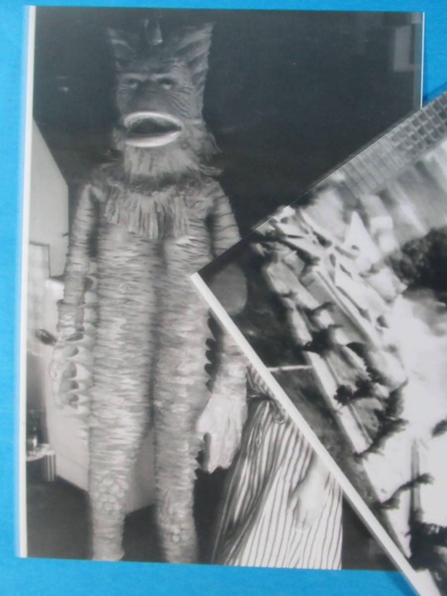 希少特撮資料★ゴルゴスラゴンパゴス「ウルトラQ」スチール写真セット_画像2