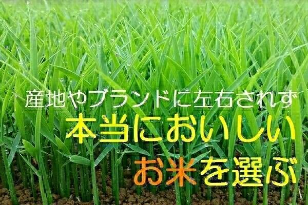 1円スタート☆うまい米はブランドじゃなく生産者で選ぶ 30年 無農薬 無化学肥料で玄米食に最適!熊本産 コシヒカリ イセヒカリ ☆_画像3