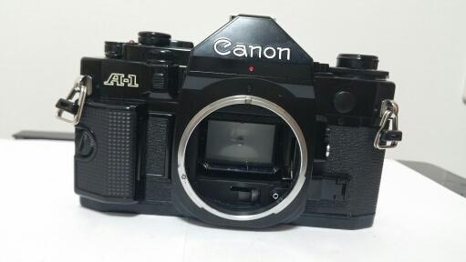 キヤノンA-1 トキナー24-40mm f2.8_画像9
