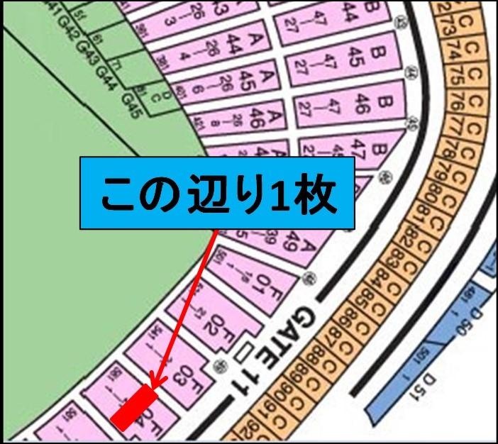 4/30(火) 巨人vs中日 レフト外野指定席(ビジター側)11列 1枚