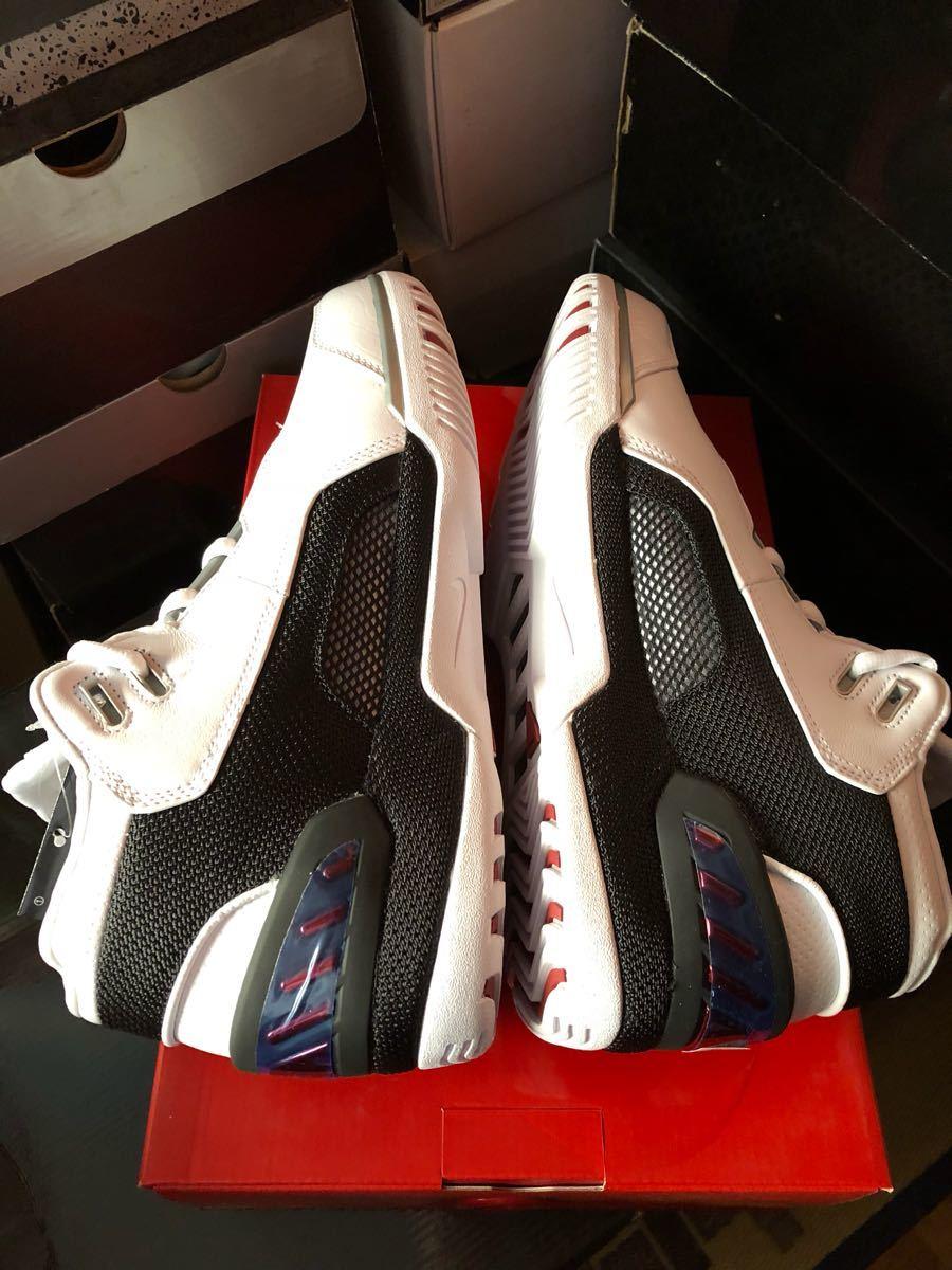 Nike Zoom Generation QS(レブロン)King's First us9(27cm)新品_画像3
