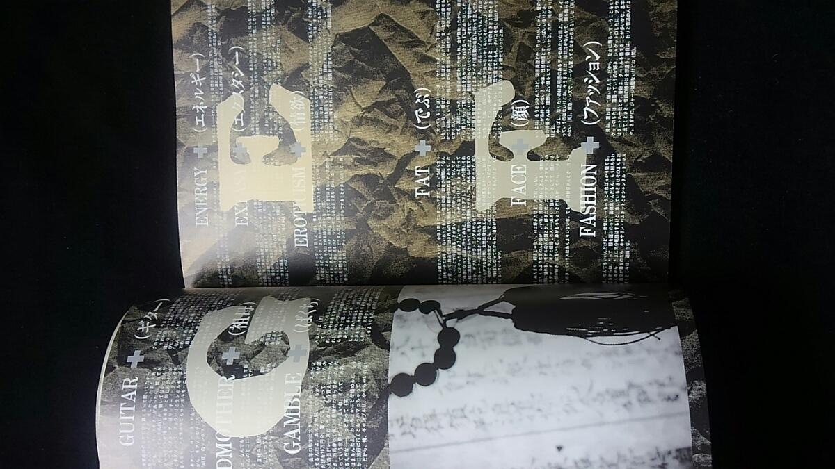 HIDE 無言激 X JAPAN アート 衝撃の作品集 写真集 帯付き ポストカード 即決 エッセイ ライブ ギター_画像8