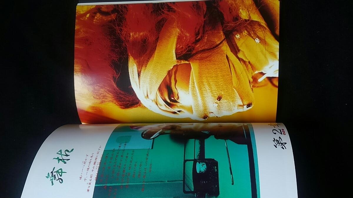 HIDE 無言激 X JAPAN アート 衝撃の作品集 写真集 帯付き ポストカード 即決 エッセイ ライブ ギター_画像3