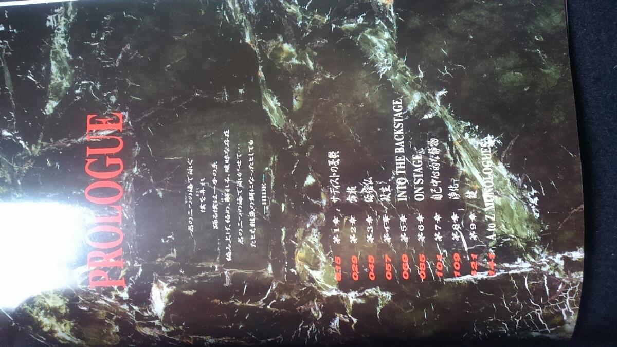 HIDE 無言激 X JAPAN アート 衝撃の作品集 写真集 帯付き ポストカード 即決 エッセイ ライブ ギター_画像2