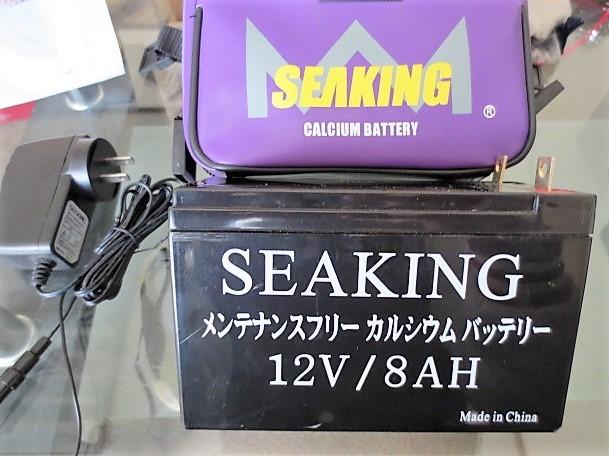 Daiwa(ダイワ)/SEABORG(シーボーグ)Z500FT ULTRAFRee(ウルトラフリー)+SEAKING CALCIUM BATTERY(バッテリー)/中古美品_画像9