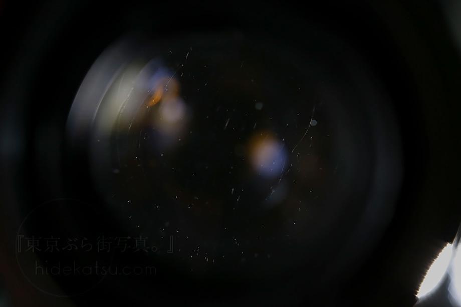 ぐるぐるボケのヘリオス MMZ【分解清掃済み・撮影チェック済み】Helios 44-2 58mm F2.0 各社用マウントプレゼント有_32h_画像8