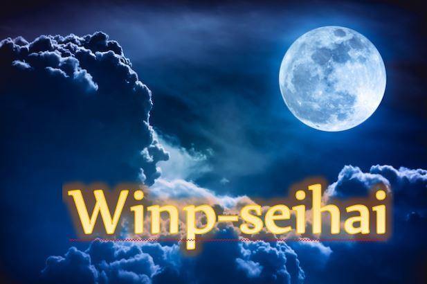 FX 究極のスキャルピング手法 WINP-SEIHAI 勝率90%以上を誇り、数分で平均5pipsを相場から狩り取ります。勝てるトレーダーに!