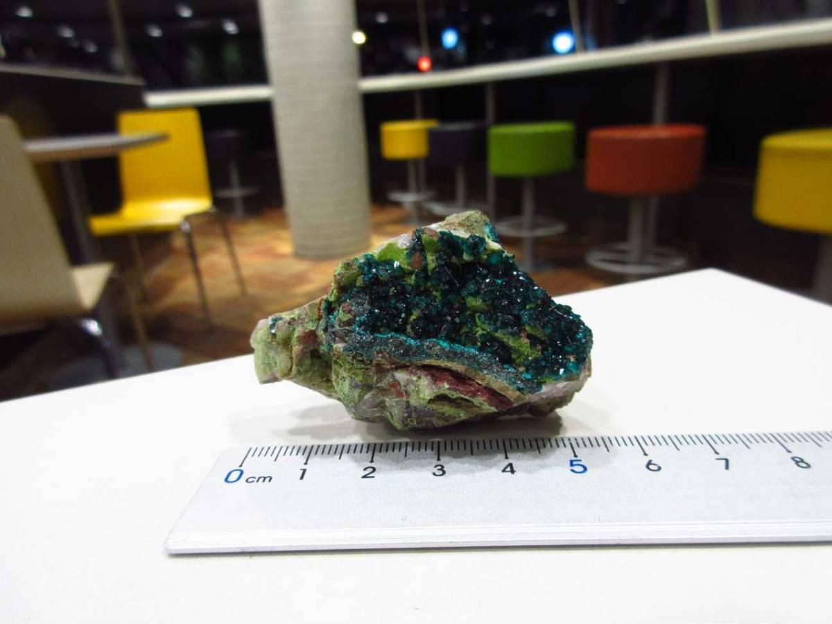 外国産鉱物標本 ナミビア産 ダイオプテーズ(翠銅鉱)_画像4