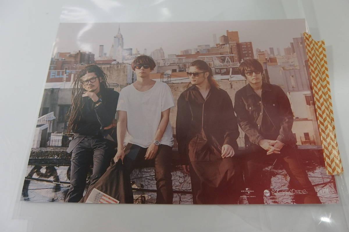◆新品未開封 ALEXANDROS 2CD+DVD+T-shirt Sleepless in Brooklyn 完全生産限定盤 ポストカードつき_画像4