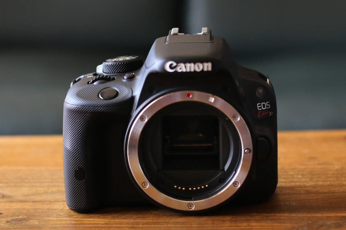 ●ショット数1200回~大変綺麗です●キャノン Canon EOS Kiss X7 ダブルズームキット EF-S18-55 F3.5-5.6 IS STMとEF-S55-250 F4-5.6 IS II_画像3