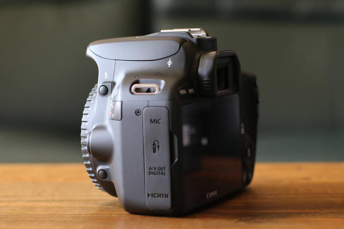 ●ショット数1200回~大変綺麗です●キャノン Canon EOS Kiss X7 ダブルズームキット EF-S18-55 F3.5-5.6 IS STMとEF-S55-250 F4-5.6 IS II_画像5