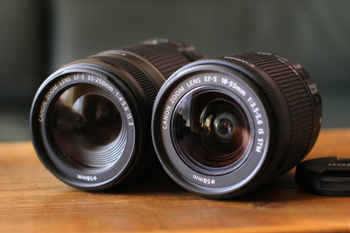 ●ショット数1200回~大変綺麗です●キャノン Canon EOS Kiss X7 ダブルズームキット EF-S18-55 F3.5-5.6 IS STMとEF-S55-250 F4-5.6 IS II_画像9