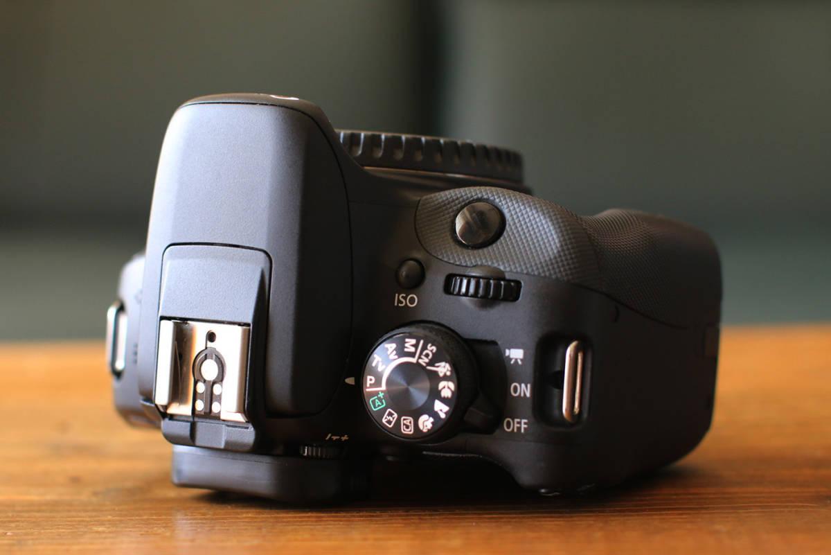 ●ショット数1200回~大変綺麗です●キャノン Canon EOS Kiss X7 ダブルズームキット EF-S18-55 F3.5-5.6 IS STMとEF-S55-250 F4-5.6 IS II_画像7