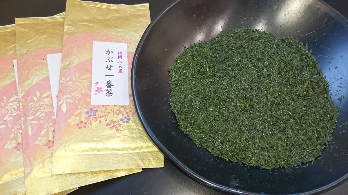 【2020年産新茶】福岡八女産 かぶせ茶一番茶100g6袋入り★★馥郁たる香り・甘味のある上級深蒸し煎茶_青々としたかぶせ茶。柔らかい新芽を厳選。