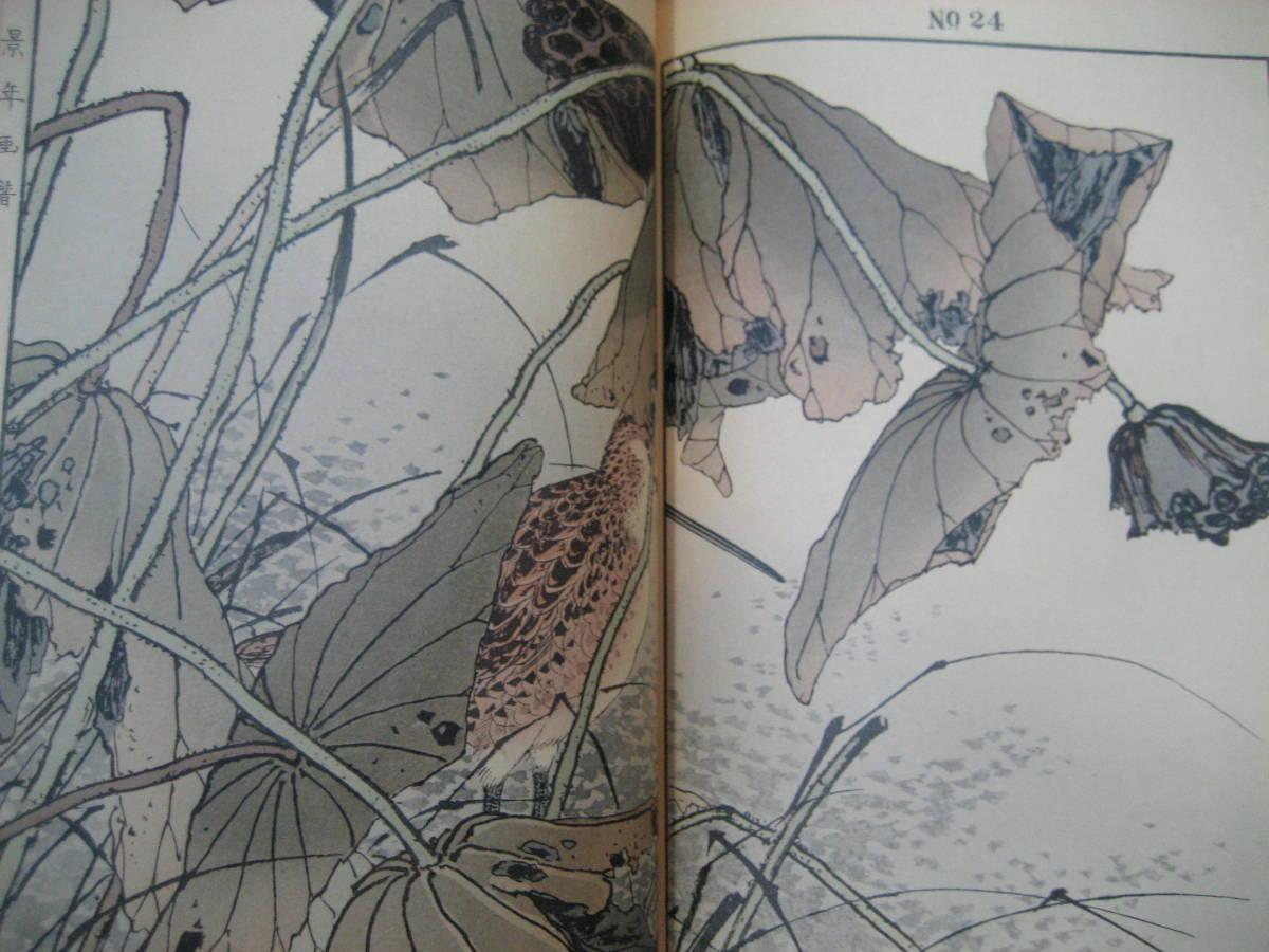 和装本 景年花鳥画譜 全4冊 今尾景年 芸艸堂 有秀堂  昭和期 絵入 美術書 彩色印刷 日本画_画像7