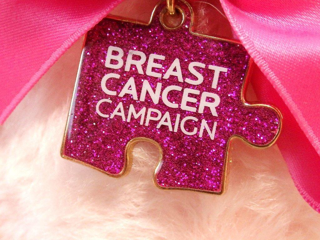 steiffシュタイフ/ Breast Cancerチャリティー・テディベア_画像3