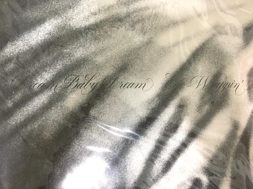 新品未開封 【限定生産】 Dream Baby Dream  EGO-WRAPPIN' LP  エゴラッピン 中納良恵   レコード_画像2