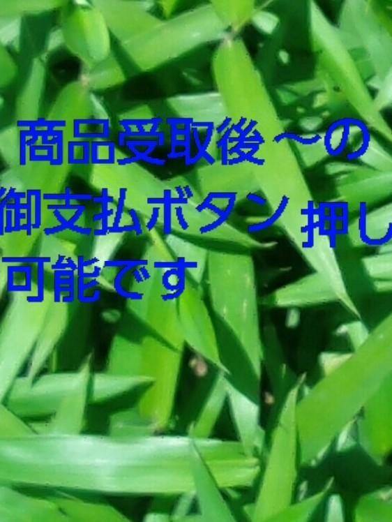 クレイジーペンシル ジャンボ オールド レア 天狗釣具オリジナル 1円スタート _画像9