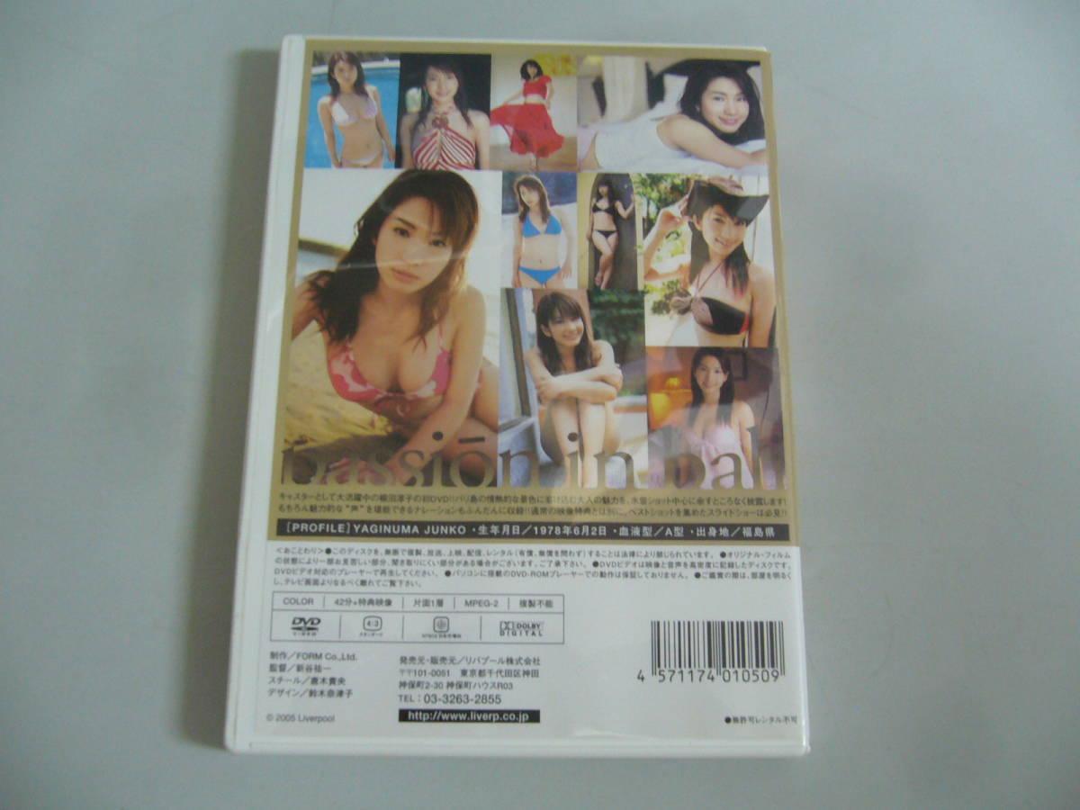 『passion in bali 柳沼淳子』DVD/リバプール_画像2