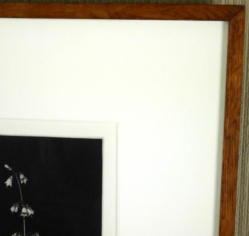 藤江彰『スズラン』◆銅版画◆直筆サイン有◆限定50版!人気作家!多数個展_画像6