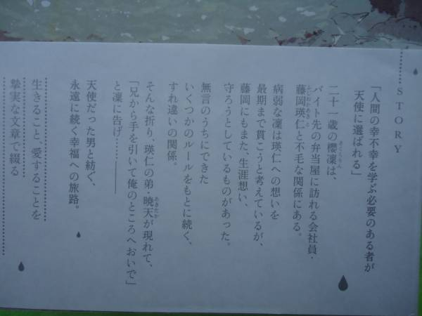 【Heaven's Rain 天国の雨】朝丘戻/yoco_画像2