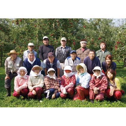 送料無料 シャイニー 青森県りんご 100% りんごジュース ギフト アップルジュース 無添加ストレート SY-C 5本入 _画像6