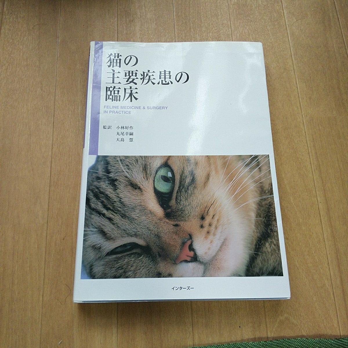 猫の主要疾患の臨床 小林好作 インターズー 医学書 獣医 動物看護師_画像1