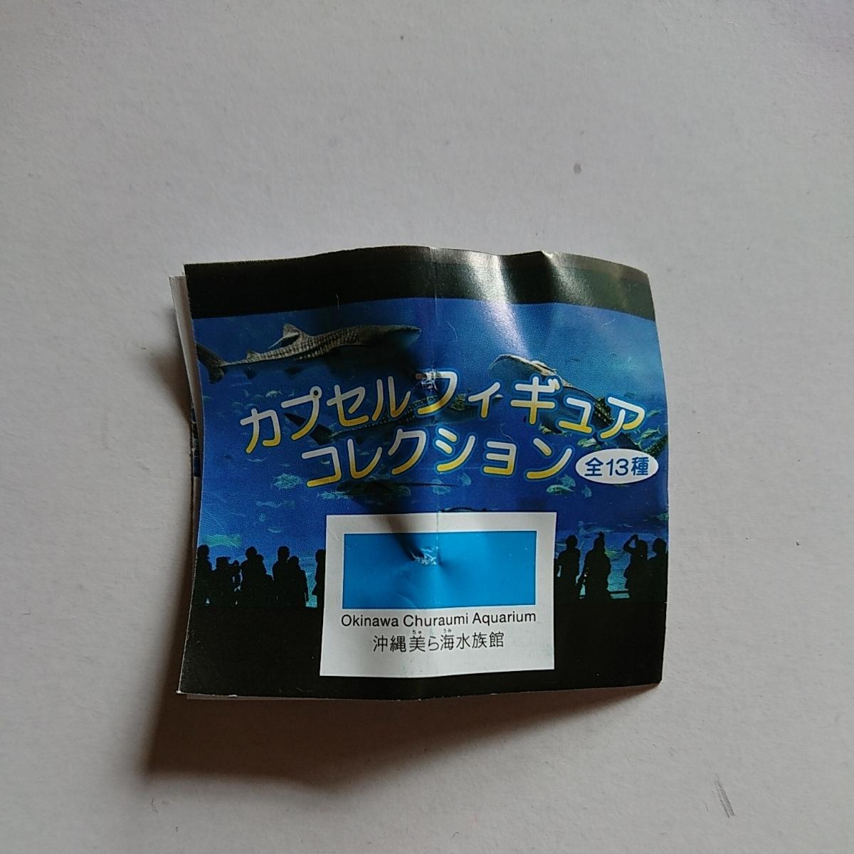 美ら海水族館 カプセルフィギュア ジンベエザメ カマイルカ_画像2