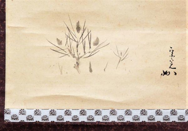 12代堀内宗完 【長生庵 兼中斎】 『若松画賛』 共箱 【真筆保証】_画像7
