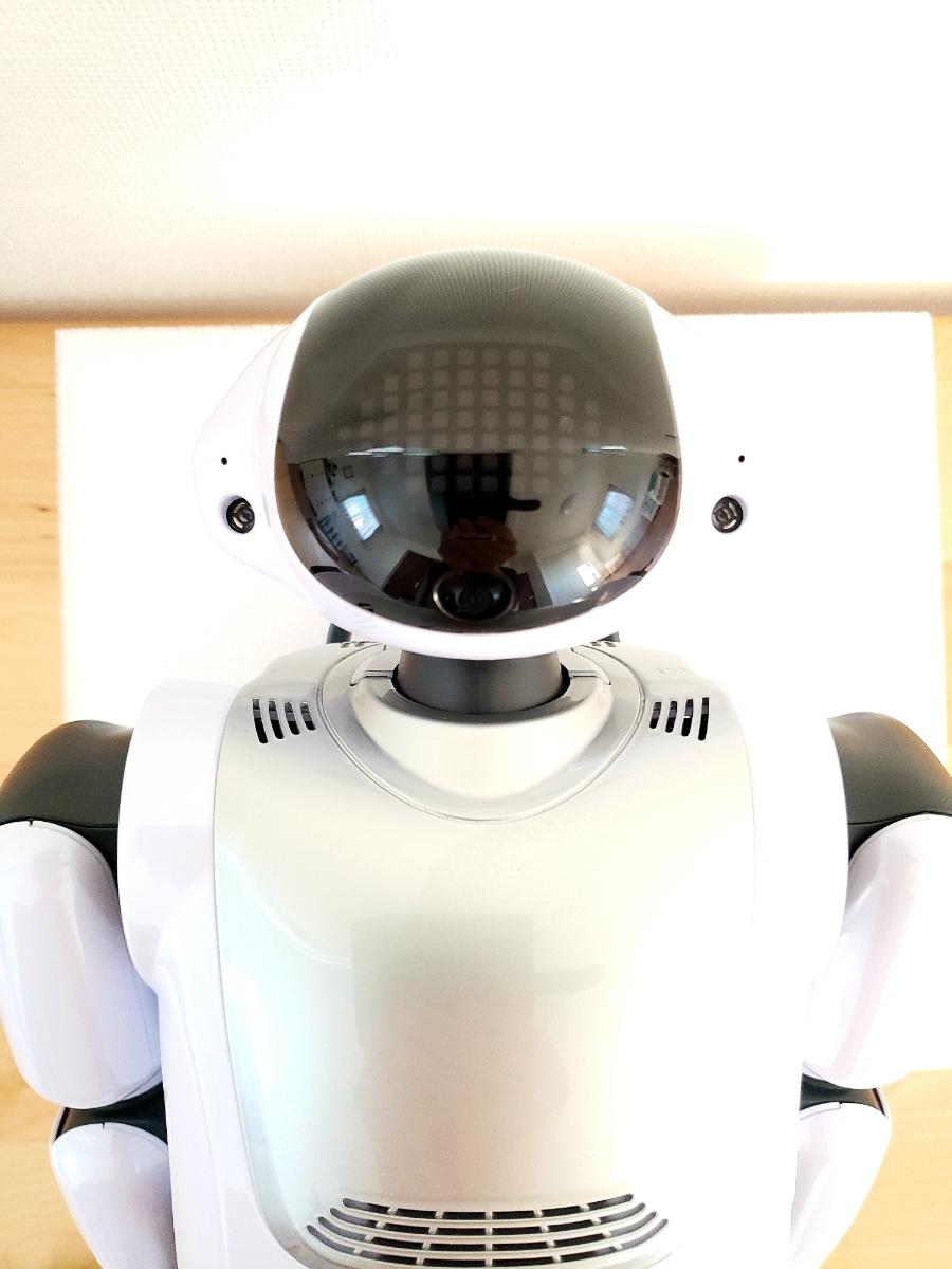 【美品・送料無料・即決あり】DMM make ROBOTS/FUJISOFT Palmi(パルミー) 二足歩行ロボット PRT-D004JW 購入価格32万円_画像3