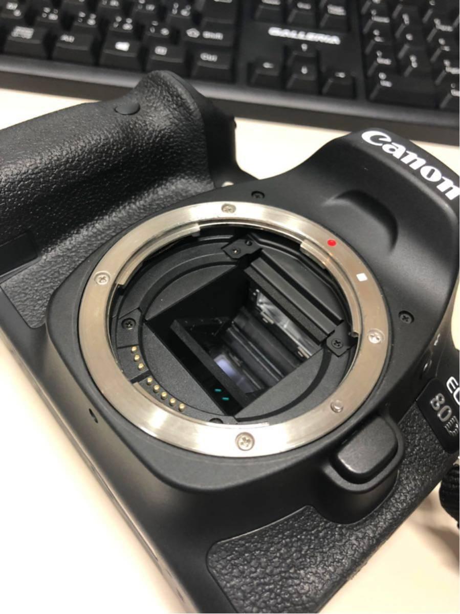 【ショット少 美品】EOS80D+SIGMA 18-300(一部新品)_画像6