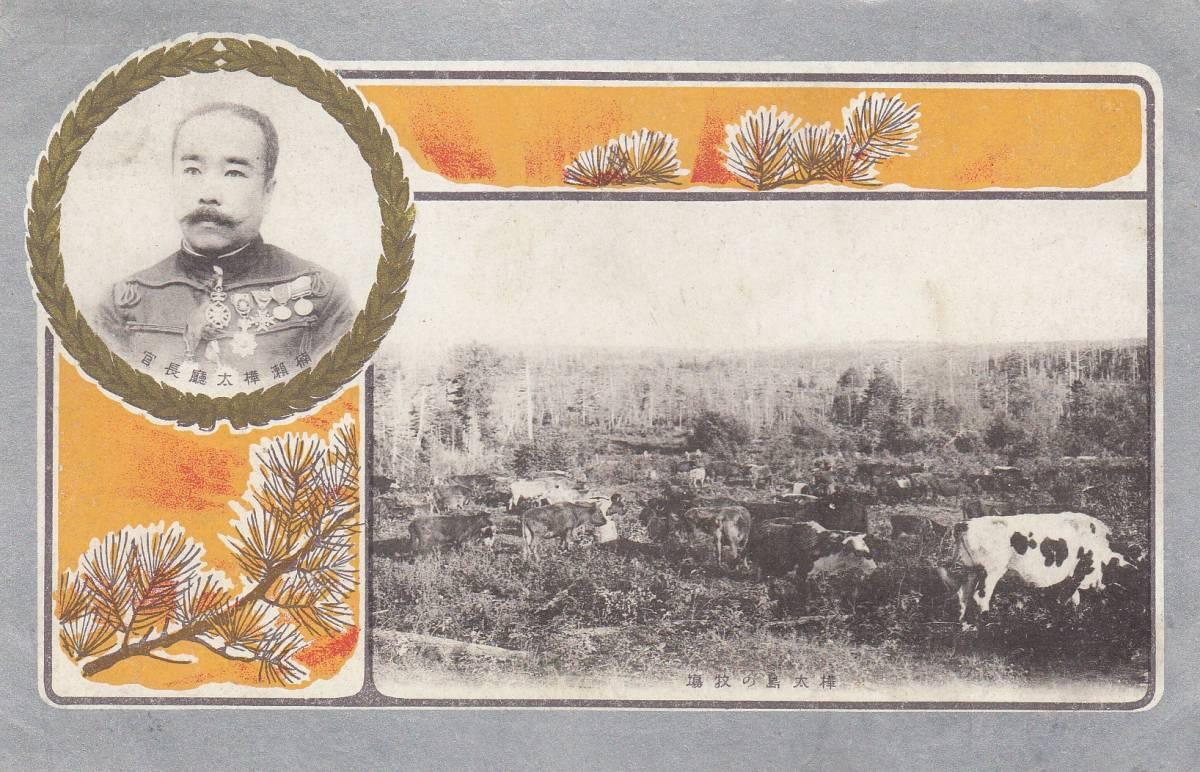 樺太庁 始政記念絵葉書 2種完 特印付き