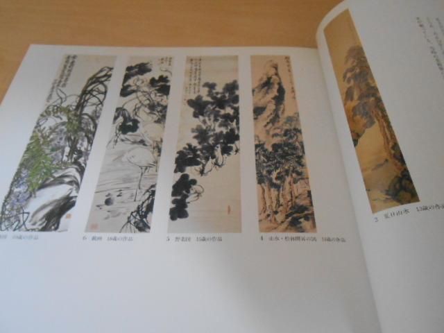 田中一村の世界 孤高・異端の日本画家 NHK出版 1995年 _画像4