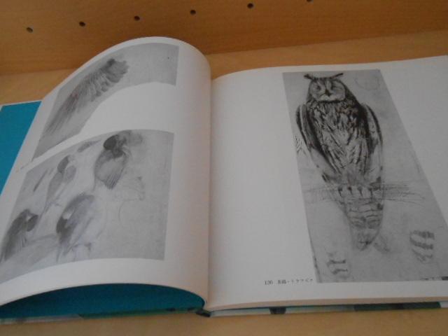 田中一村の世界 孤高・異端の日本画家 NHK出版 1995年 _画像9