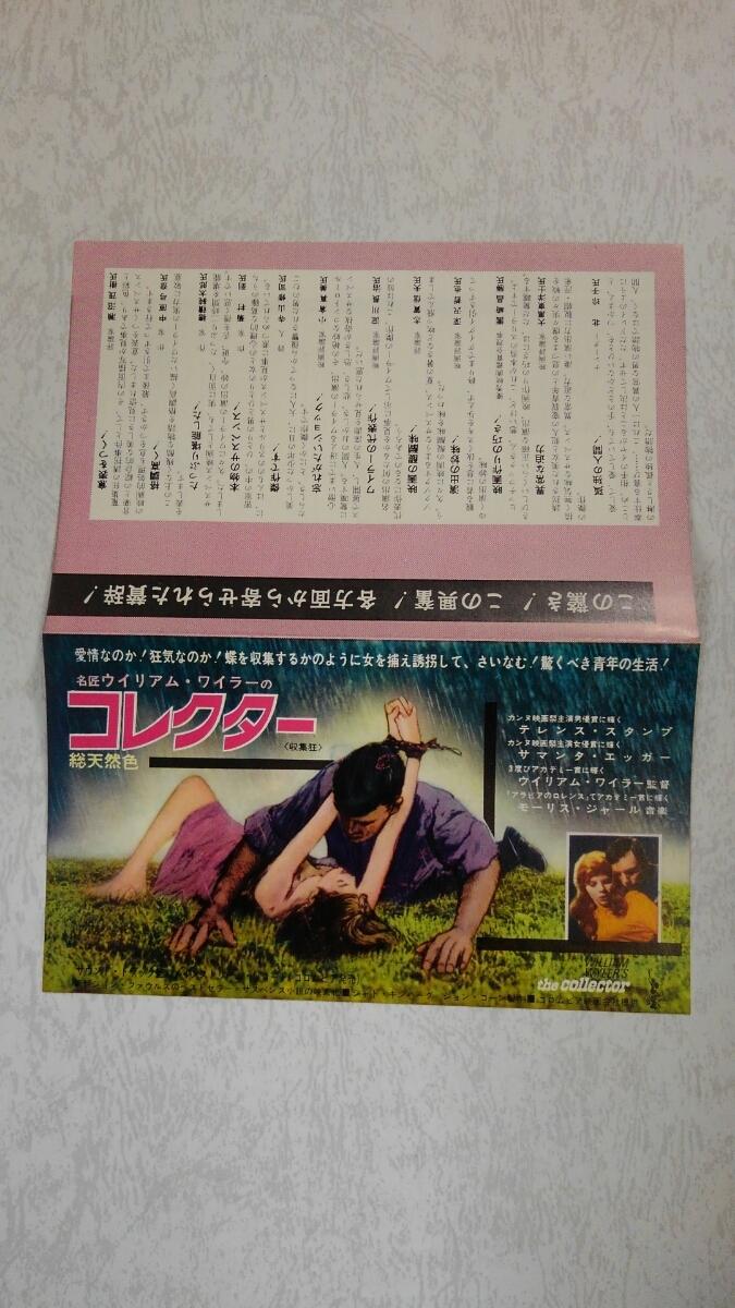 稀少!!テレンス・スタンプ「コレクター」映画チラシ/サマンタ・エッガー/館名:ヒビヤみゆき座/1965年公開