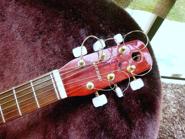 【限定値下げ】「 K.YAIRI ENJOY PART-2」「 LADY BIRD 」ジャパンビンテージ コレクター向き トラベルギター ミニアコーステイックギター_画像2