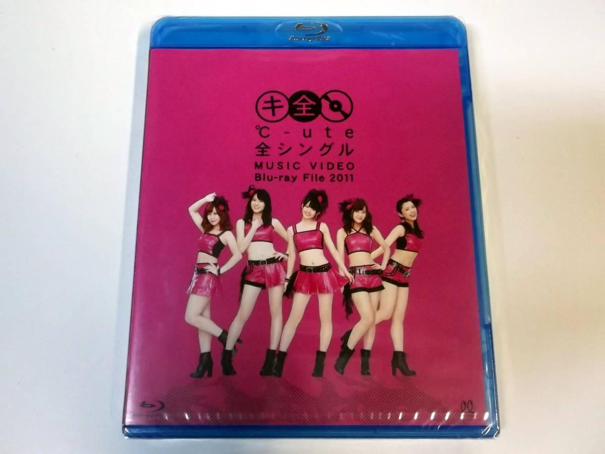[新品同様]モーニング娘。/真野恵里菜/Berryz工房/スマイレージ/℃-ute 全シングル MUSIC VIDEO Blu-ray File 2011+ドリームモーニング娘。_画像7