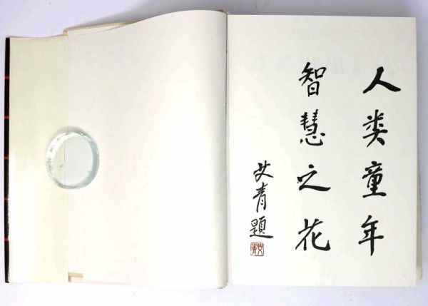 【中国美術】 中国彩陶図譜 張朋川 1990 文物出版社 中国語本★古美術 陶磁 - 管: JA25_画像6