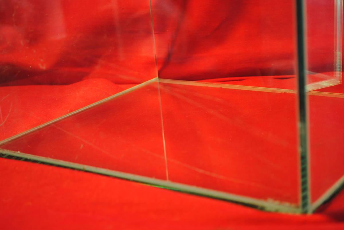 D361.【2点セット】水槽◇ガラス製◇ガラス水槽◇観賞魚◇めだか◇熱帯魚◇金魚◇アクアリウム◇インテリア_画像4