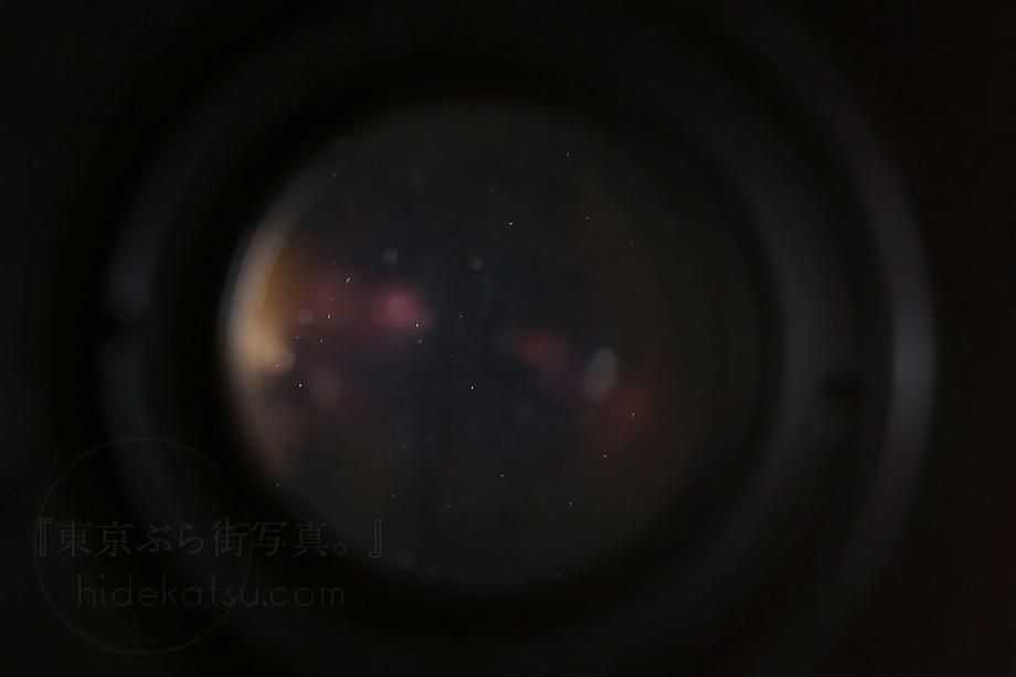 銘玉フレクトゴン 35mm ゼブラ【分解清掃済み・撮影チェック済み】Carl zeiss jena / Flektogon F2.8 35mm M42_66f_画像9