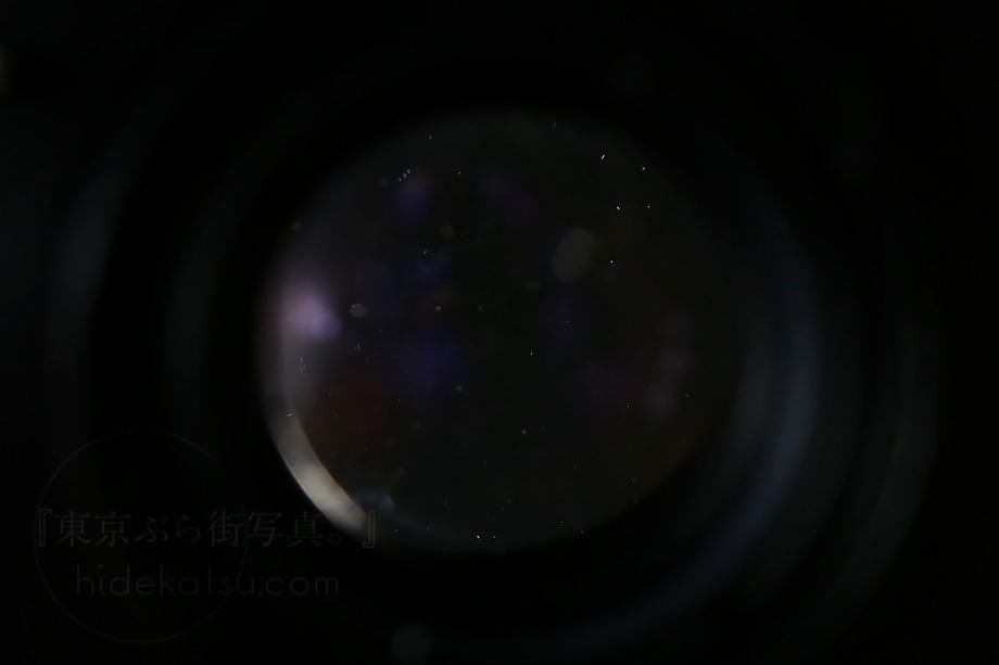 美品)銘玉フレクトゴン 35mm ゼブラ 箱付き【分解清掃済み・撮影チェック済み】Carl zeiss jena / Flektogon F2.8 35mm M42_67f_画像9
