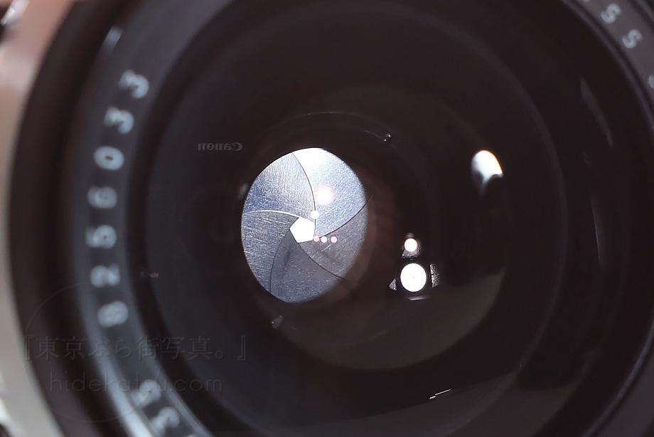 銘玉フレクトゴン 35mm ゼブラ【分解清掃済み・撮影チェック済み】Carl zeiss jena / Flektogon F2.8 35mm M42_66f_画像7