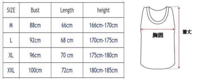 【XXL-size】ALPHA★Tシャツ 米グレー /筋トレ/sport/training/服/GYM SHARK/wear/ボディビル/ゴールド/ジム/メンズ/トレーニング/ウェア/_画像6
