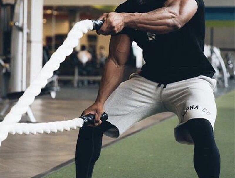 【XXL-size】ALPHA★Tシャツ 米グレー /筋トレ/sport/training/服/GYM SHARK/wear/ボディビル/ゴールド/ジム/メンズ/トレーニング/ウェア/_画像5