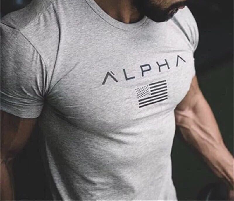 【XXL-size】ALPHA★Tシャツ 米グレー /筋トレ/sport/training/服/GYM SHARK/wear/ボディビル/ゴールド/ジム/メンズ/トレーニング/ウェア/_画像3